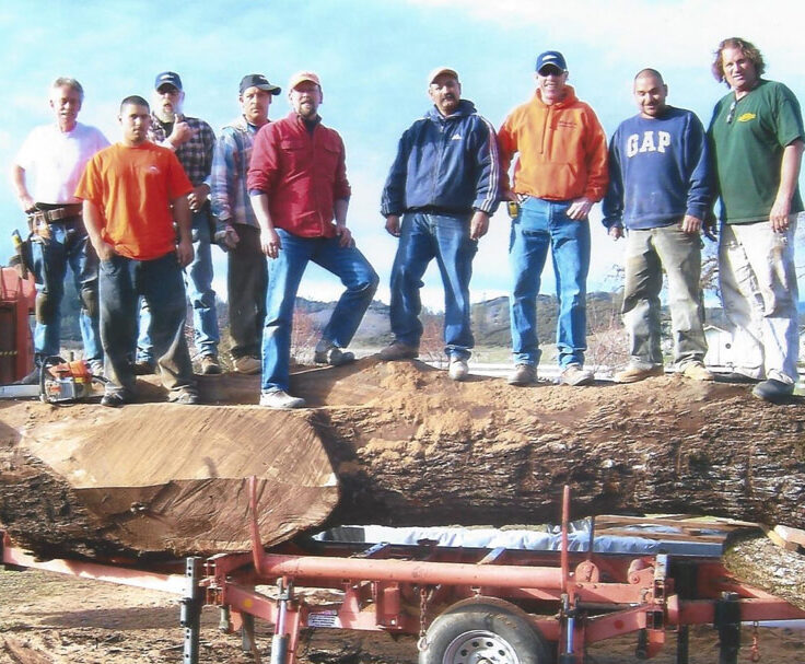 an image of a work crew standing on a log