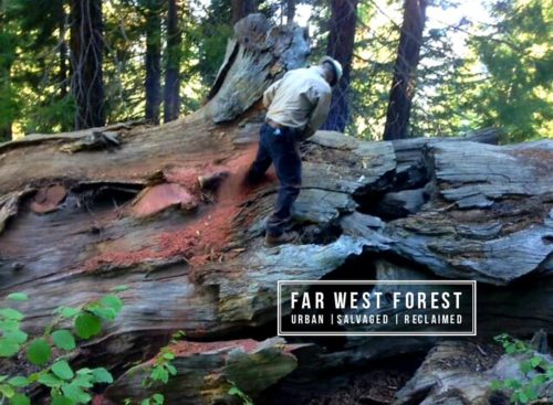 Far West Forest - Urban Salvaged Reclaimed Business