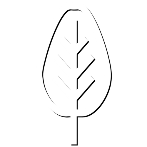 BUGG-TREE-CARE-white-vector-shadow